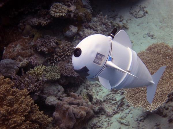 """Cá robot 3D có thể là """"giám sát viên"""" dưới nước trong tương lai"""