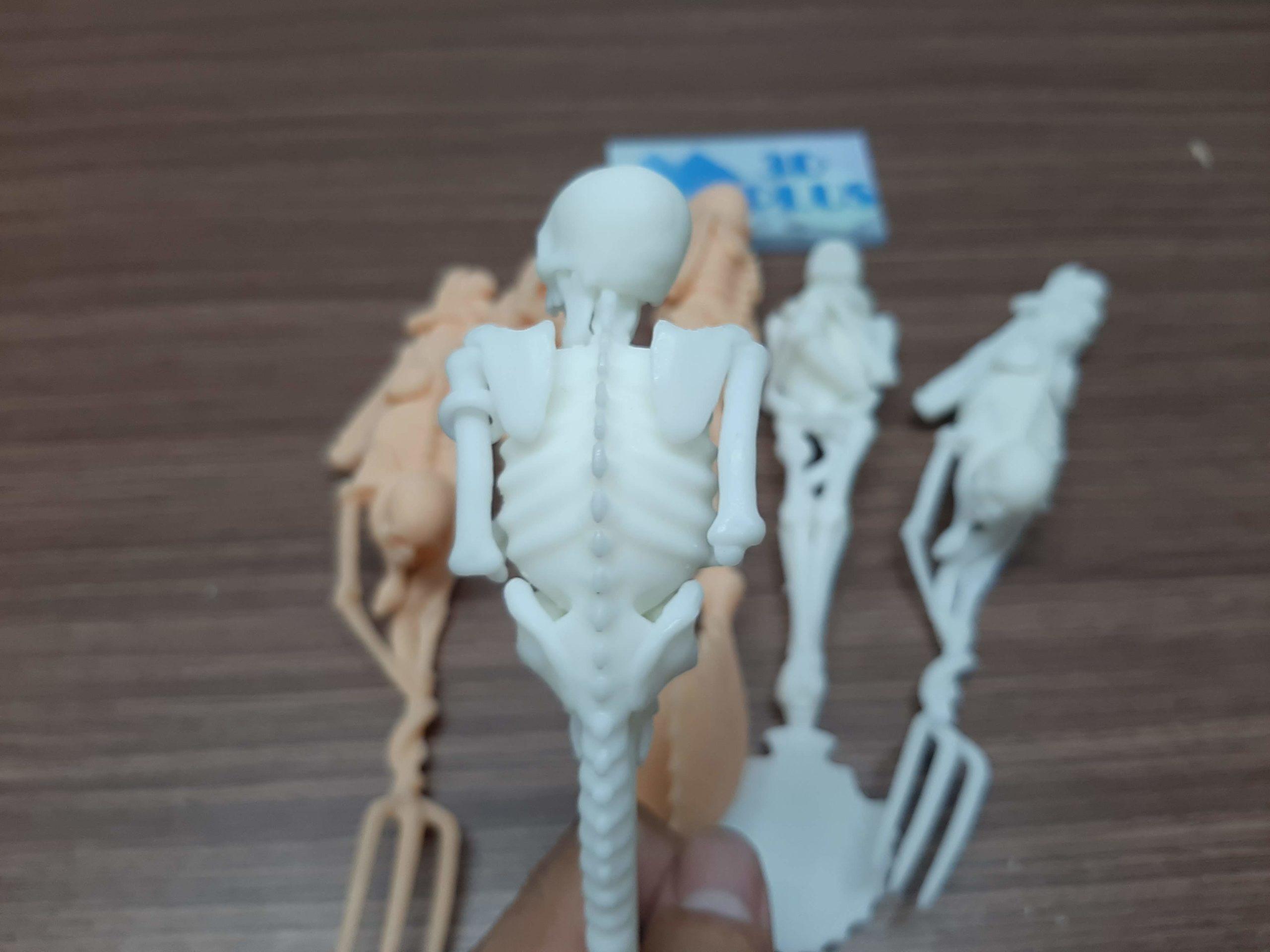 in 3D SLA bộ xương người siêu nhẵn mịn bóng láng